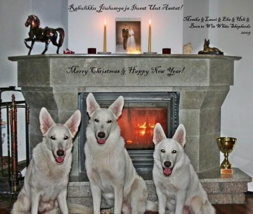 Rahulikke Jõule ja Head Uut Aastat 2009-2010! 3