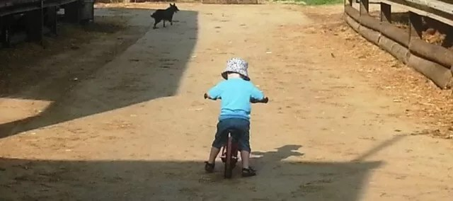 riding a balance bike