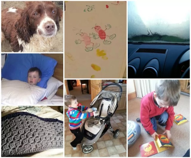 photo a day week 6 toddler and dog