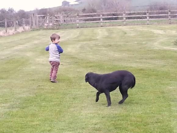 boy teasing dog