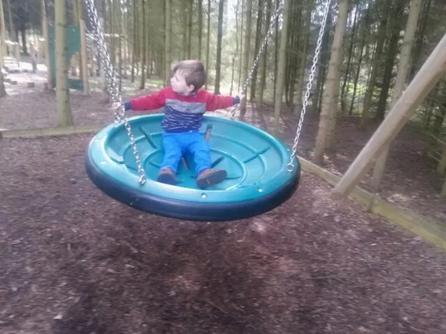 playswing in the woods at Compton Verney