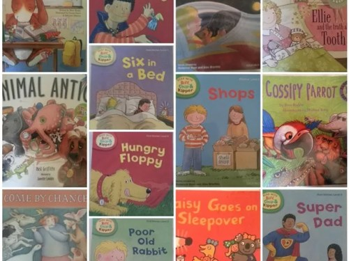 #365 300 picture books