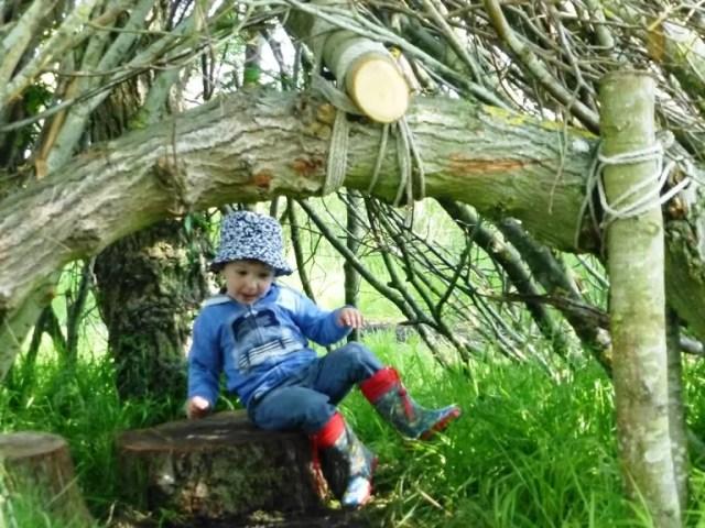 Stowe branch woooden den