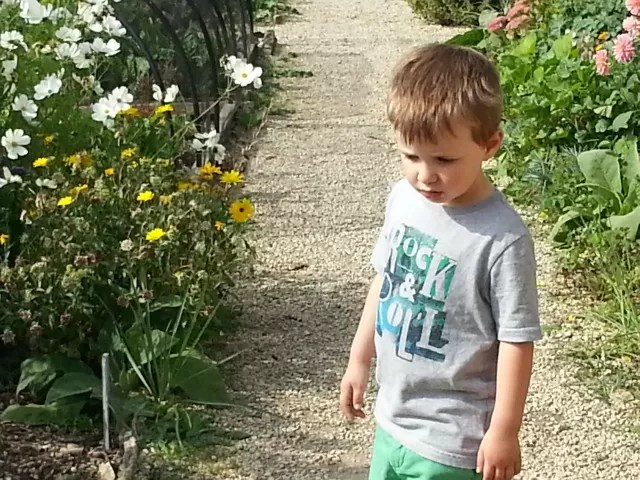 looking in the garden at cogges farm