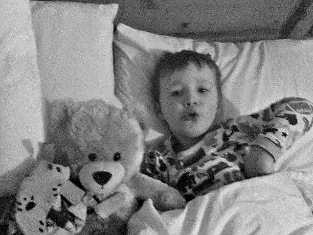 snuggling in bed with teddies