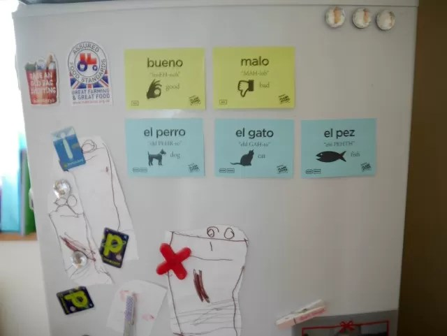 Learning Flashsticks Spanish