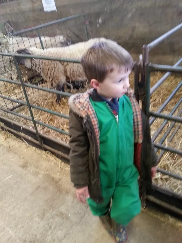 new overalls at lambing weekend