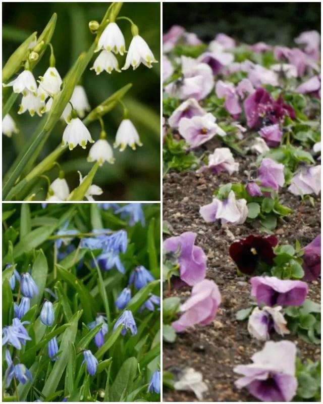 flowers at waddesdon manor