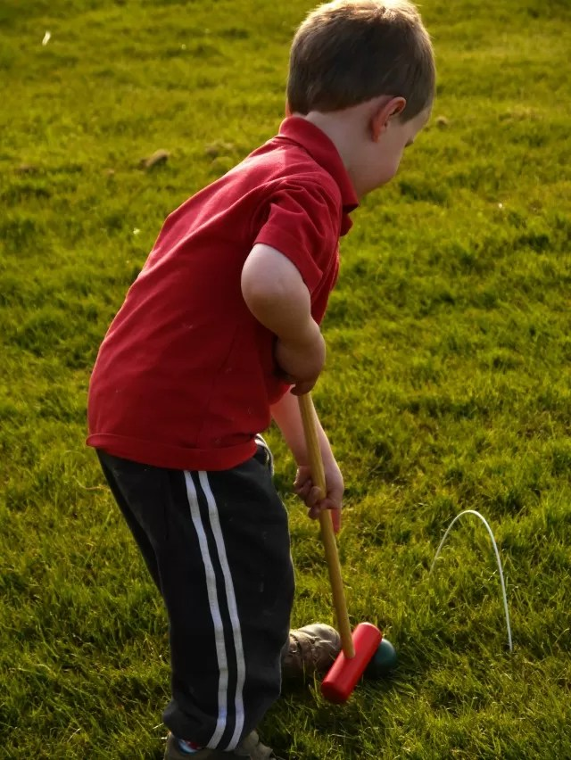 hitting the croquet ball through the hoop