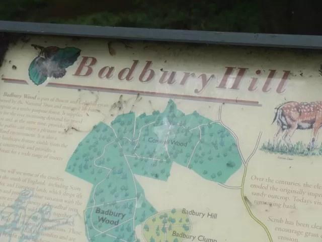 Badbury Hill