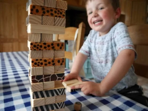 playing WWF jenga