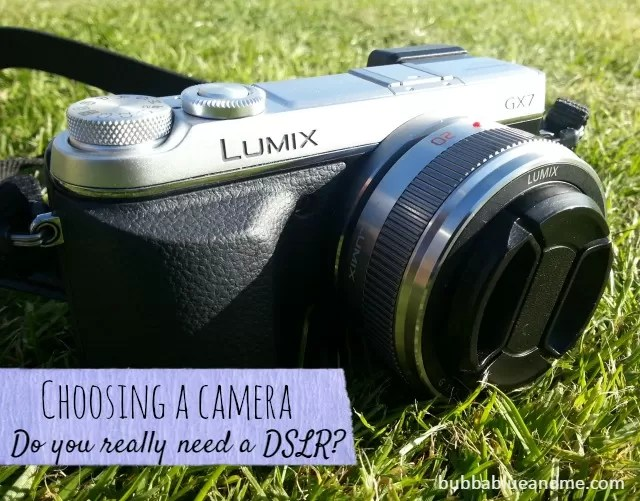 Choosing a camera, do you really need a DSLR - Bubbablueandme
