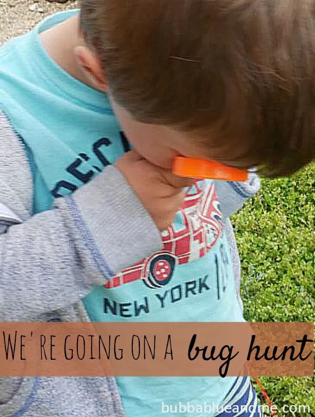 We're going on a bug hunt with bug discover kit - Bubbablueandme