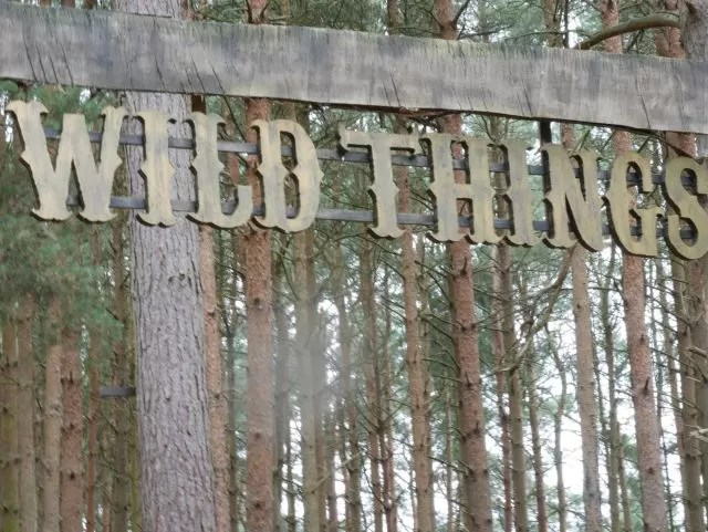 Wild Things at Rushmere Country Park