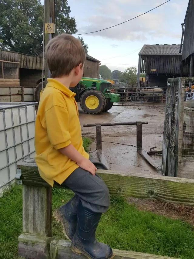 Watching the work on the farm