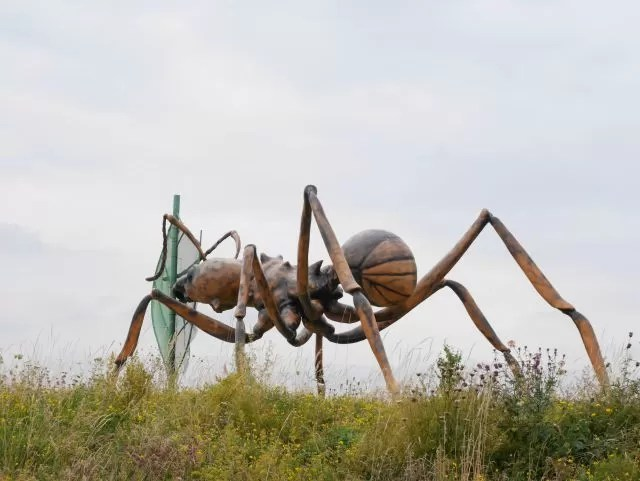 giant ant at butterfly world project