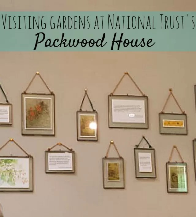 picture frames at Packwood House cafe