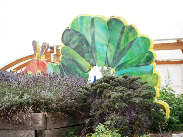 very hungry caterpillar vegetable garden