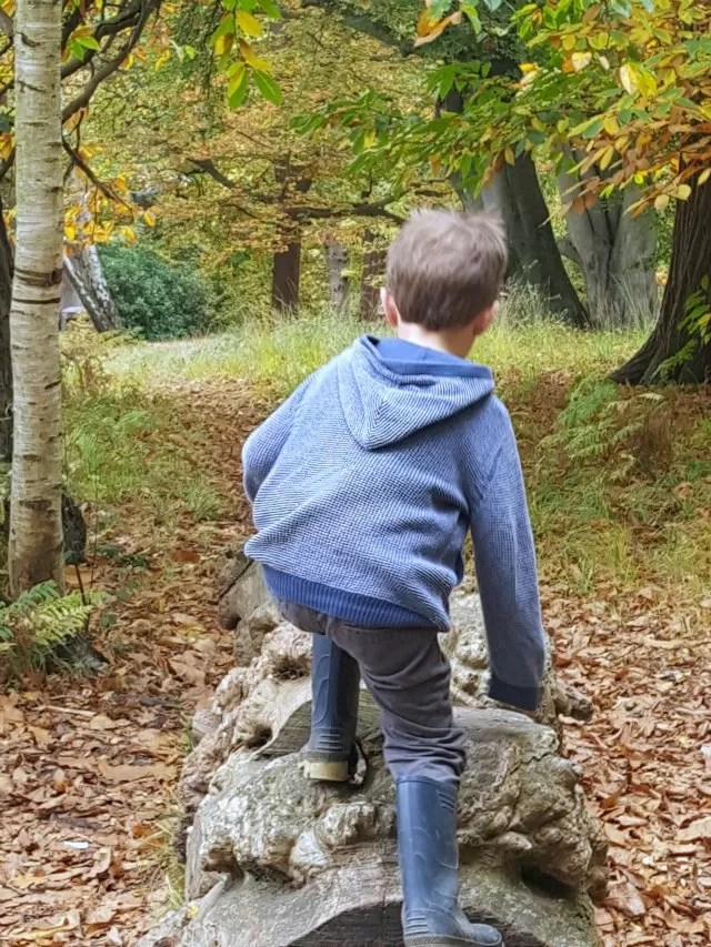 clambering on logs at Virginia Water