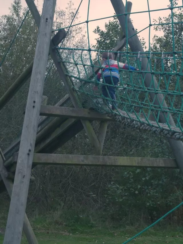 high up on the rope bridge