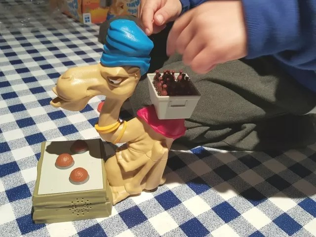 setting up trickin camel