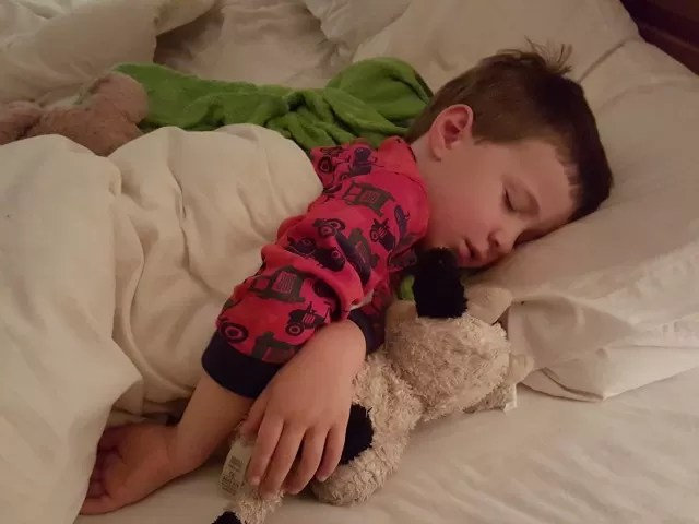 Sleeping little boy with soft toy cow