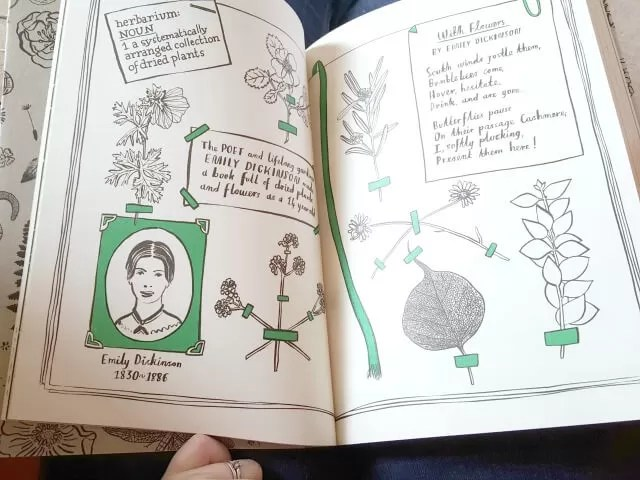 flower facts in Hello Nature