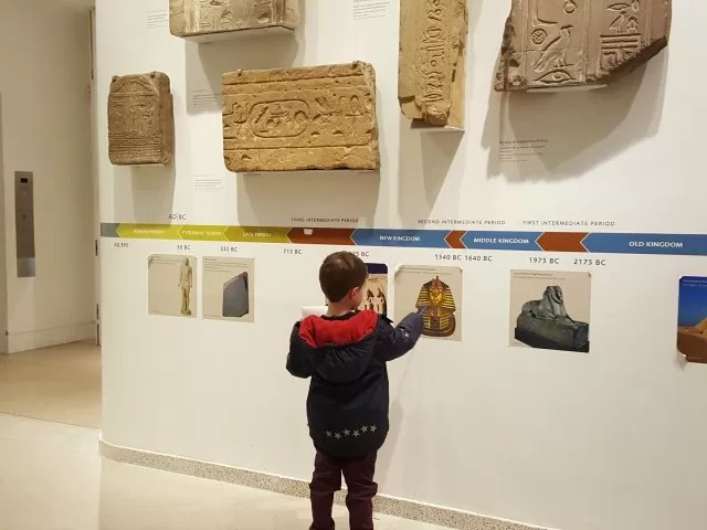 looking at ancient egyptian artefacts in Ashmolean