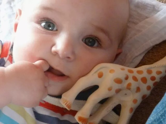 baby with sophie the giraffe