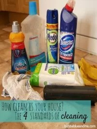 how clean is your house
