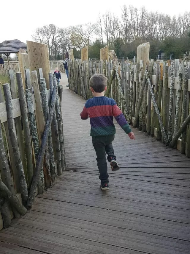running by the elephants at Twycross zoo
