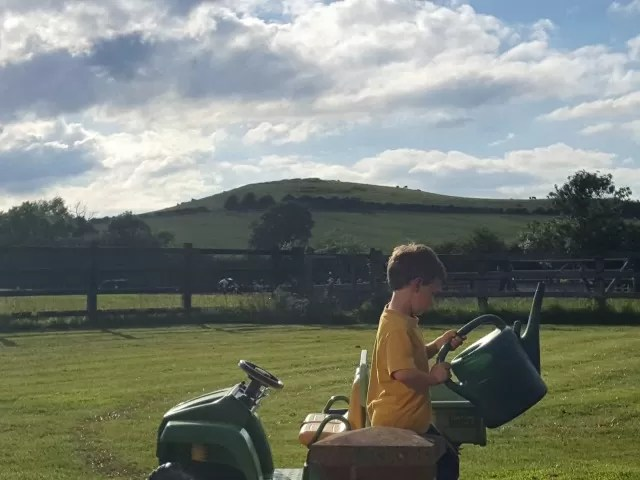 sport of gardening at golden hour
