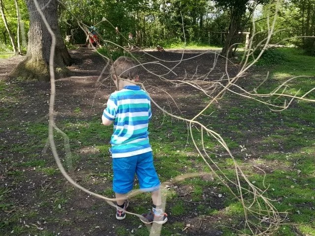 finding branches