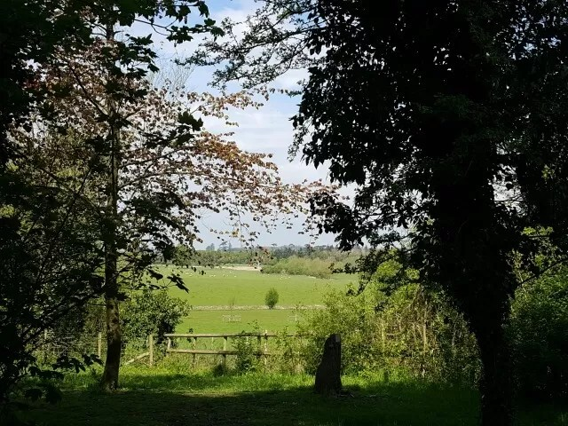 view from the natural playground at croome park
