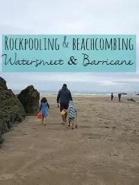beachcombing barricane beach