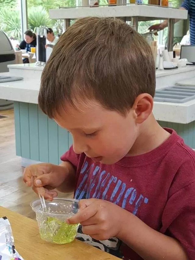 lunch-at-cotswold-wildlife-park