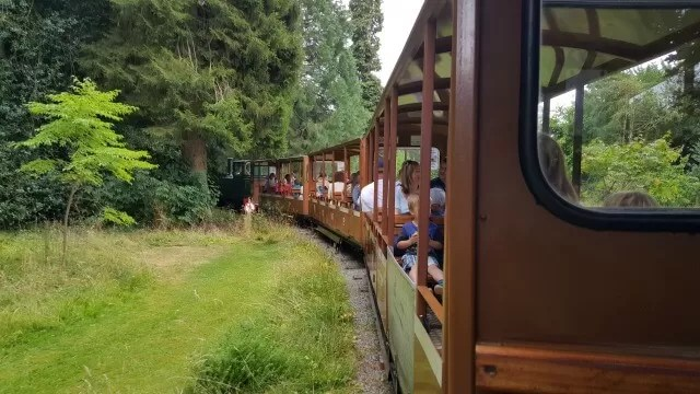 on-the-cotswold-wildlife-park-train