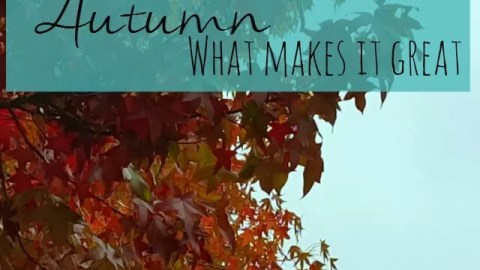 Season of mists – what makes autumn?