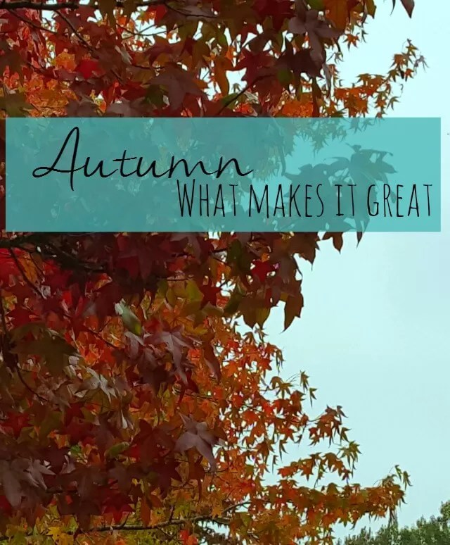 what makes autumn great - Bubbablue and me