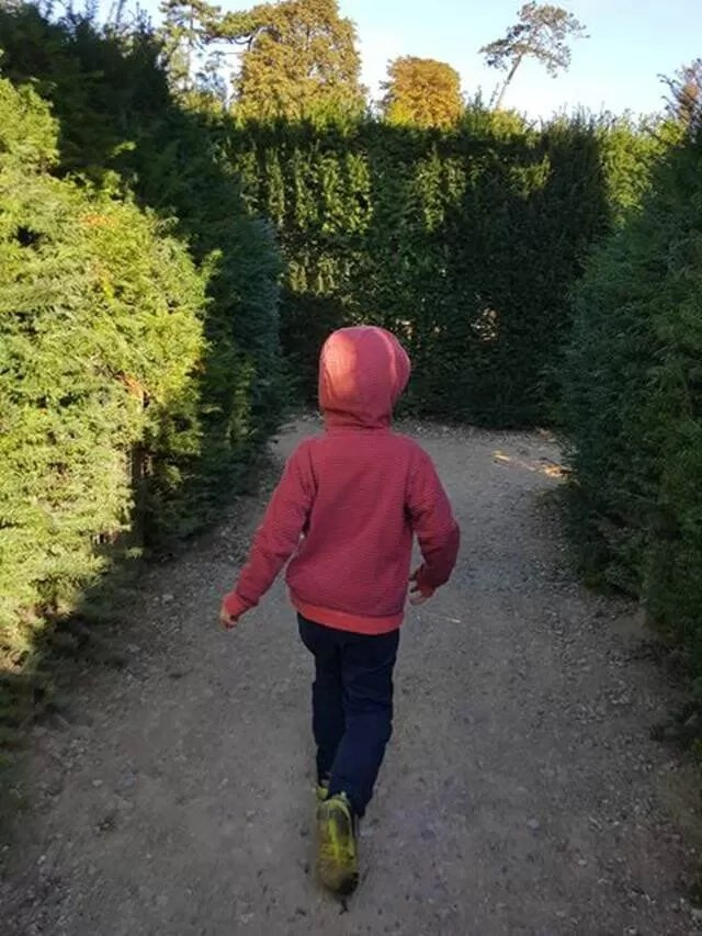 going through the maze at blenheim palace