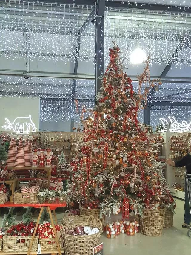 red and gold christmas tree displays at millets