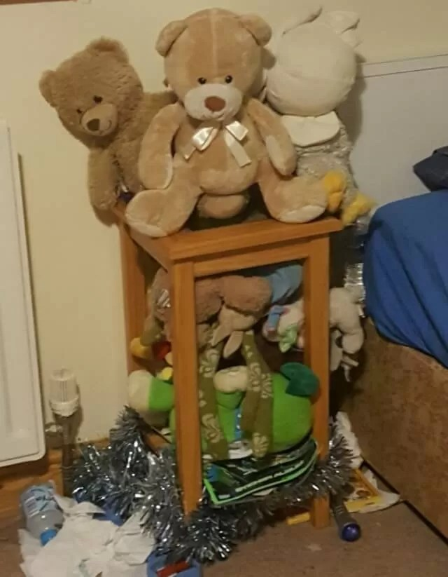 teddy bear storage