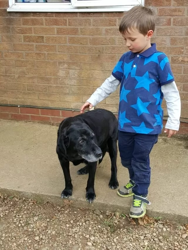 boy-with-his-old-dog