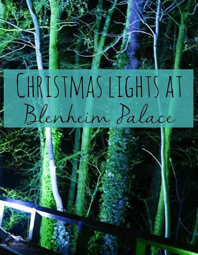 Christmas lights at Blenheim Palace - Bubbablue and me