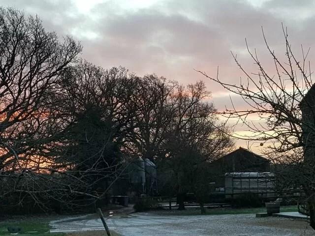 sunrise and snow on the farm