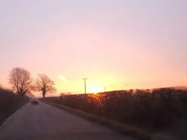 sunrise over the hedge