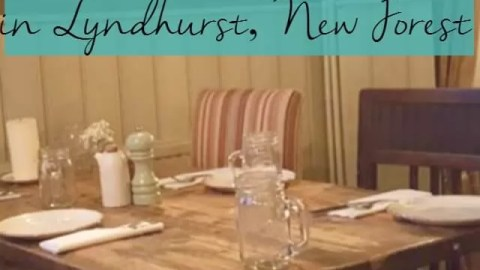 Eating out with children in Lyndhurst New Forest