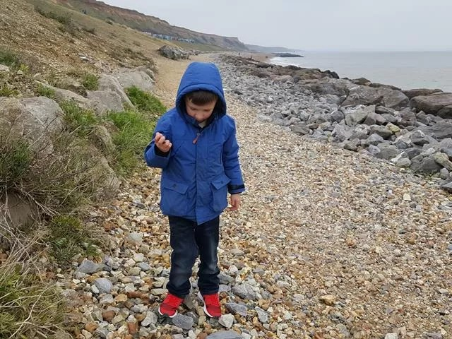 fossil hunting at barton on sea