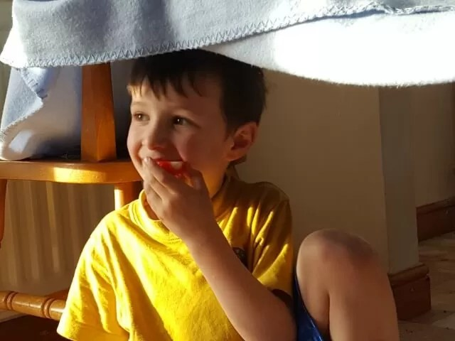 eating strawberries in a den
