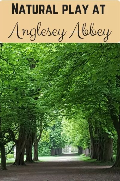 Natural play at Anglesey Abbey and gardens - Bubbablue and me